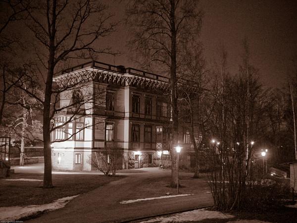 Lauluja ja leikkejä 20-vuotisjuhlissa 29.11.2008