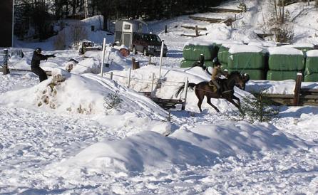 Hiihtoesteratsastusta Nuuksiossa 12.3.2006